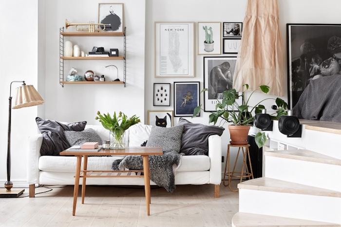 Plant power, witte kamer met een aantal planten