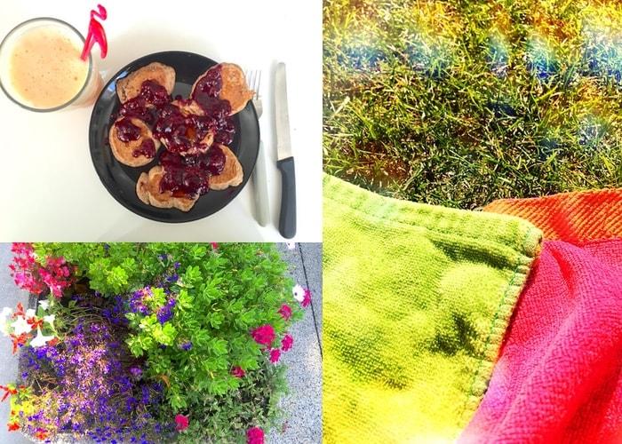 Comeback zomer pannenkoekjes bloemen en zonnen in het gras