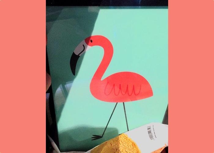 Flamingo geadopteerd