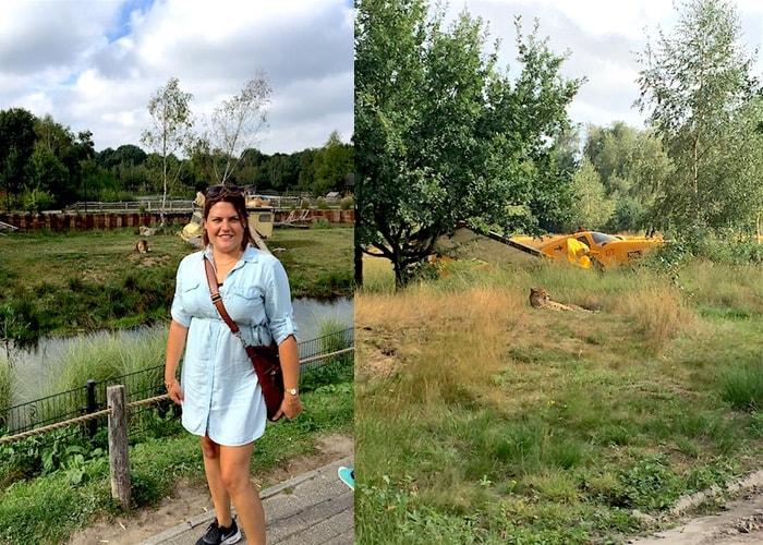 Safari luipaard en Ayla bij de leeuwen