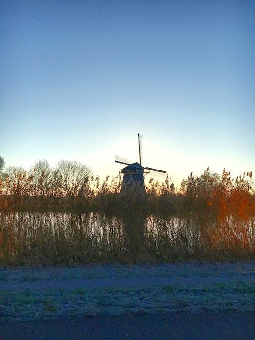Molen in de polder